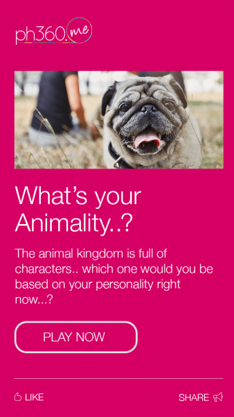 Quiz-Animality